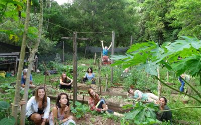 Life Is Good : Sustainable Living