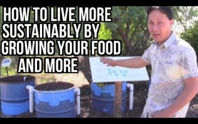 Learn Solutions for Sustainable Living Including Growing Food & More
