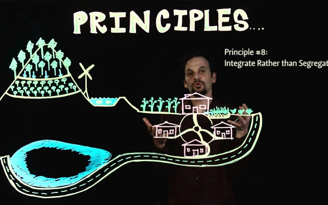 The Permaculture Principles